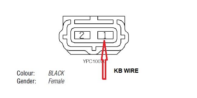 CKP wire.jpg