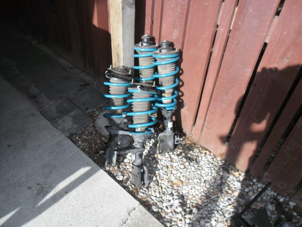 new springs.JPG