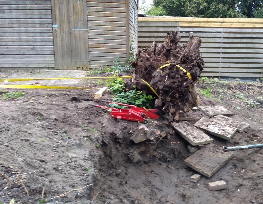 Pulling tree stump2.jpg